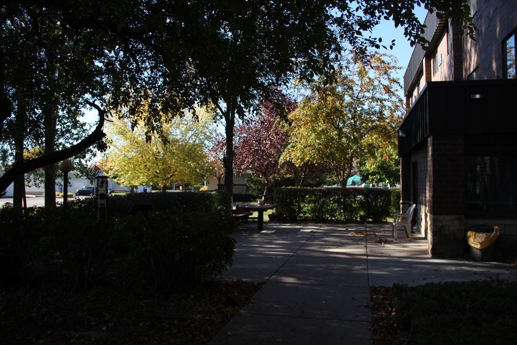 the-wiggins-outdoor-common-area